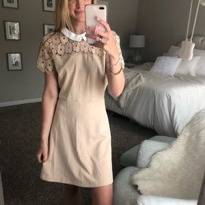 Collared nude/blush dress from online boutique!